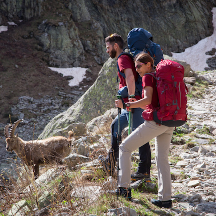 LE TREKKING DU LOUP: THE TRACK BY #FERRINOGREASTTREKS